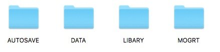 premiere film project folder structure